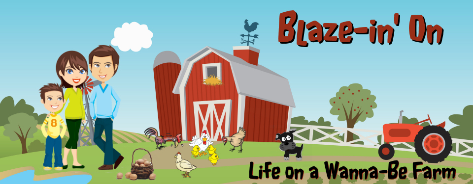 Blaze-in' On: Life On a Wanna-Be Farm